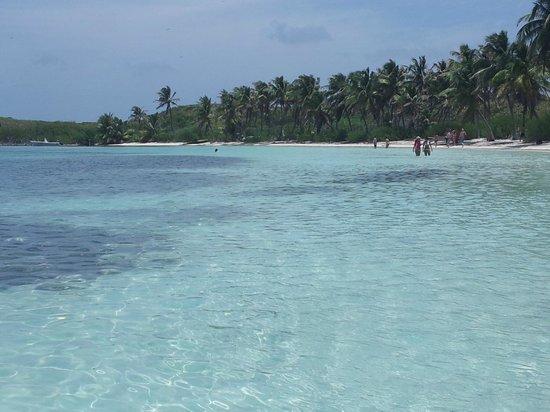 Contoy Adventures : Spiaggia