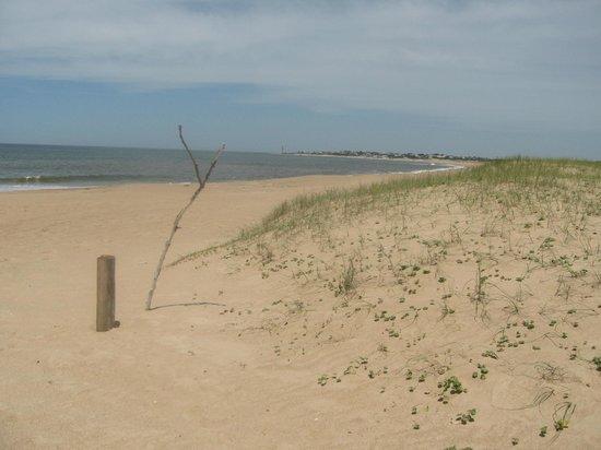 Posada Arenas de Jose Ignacio: Five minute walk to secluded beach (note the marker for return!)