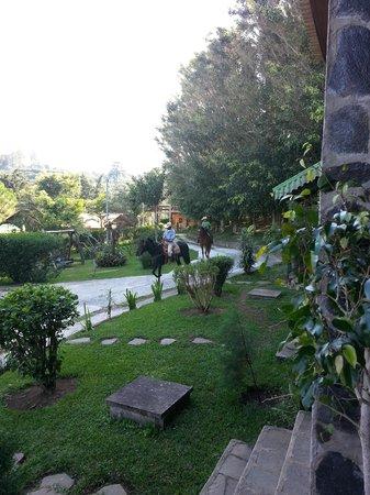 Hotel Alicante Montana: Jardines y paseo a caballo