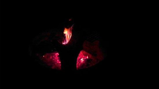 Allaire State Park: A late night fire.