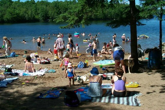 Shubie Campground: Great Swimming beach