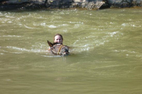 Now Amber Puerto Vallarta: booked through Moses horse ride