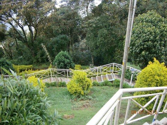 Deshadan Mountain Resorts : View of Garden
