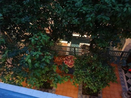 Riad des Artistes: vue depuis le balcon du 1er