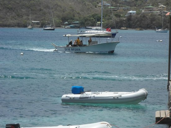 Dive Bequia: Coming back for the surface interval