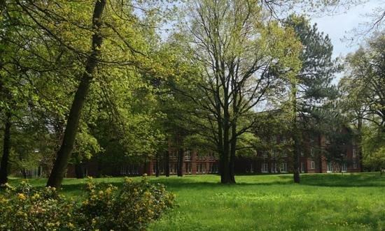Dorint Herrenkrug Parkhotel Magdeburg: Ansicht vom Park aus
