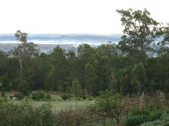 Wallaby Ridge Retreat : Dawn