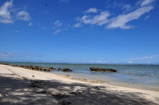 Beach Cocomo: Coral Reefs from Cocomo Beach