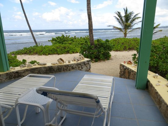 The Palms at Pelican Cove : View from our room #8