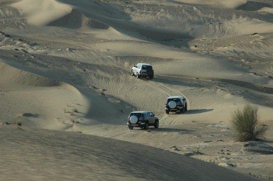 jeep safari picture of sand trax. Black Bedroom Furniture Sets. Home Design Ideas
