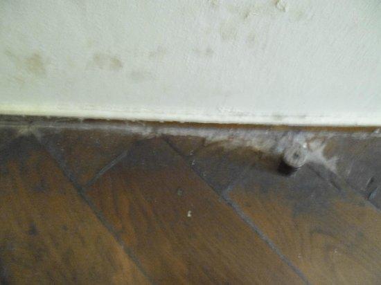 Frankfurt Hostel: Dirty floor