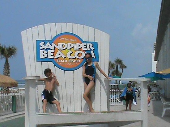 The Sandpiper Beacon Beach Resort : So Big it makes you look Small !