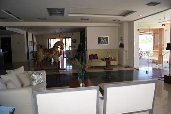 Asterion Hotel Suites and Spa: reception