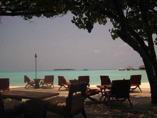 Taj Exotica Resort & Spa: Pool area