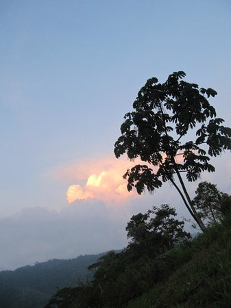 Farm of Life (Finca de Vida): Sunrise, pretty cloud colors