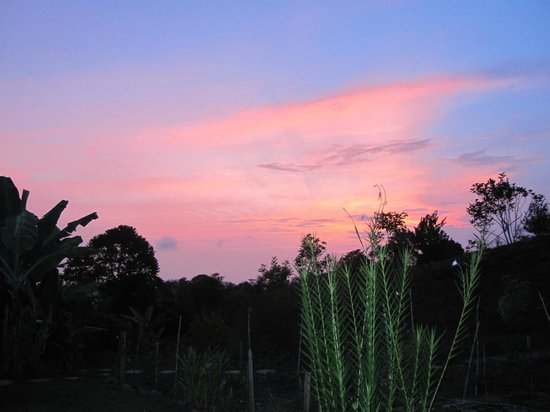 Farm of Life (Finca de Vida): Gorgeous sunset sky
