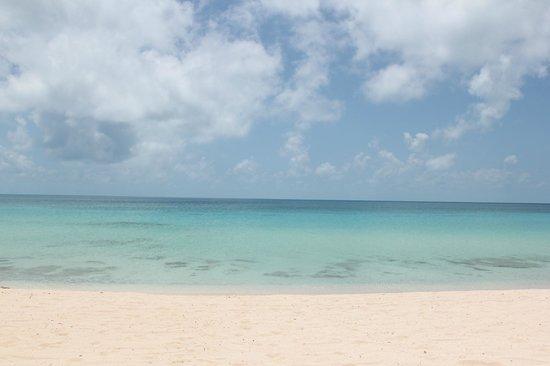 The Cove Eleuthera : Serene water