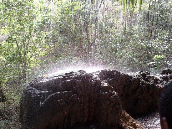 Hacienda El Jibarito: una de las cascadas