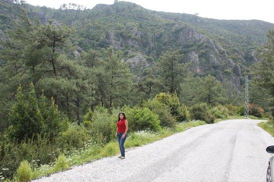 Окрестности Мармариса - Picture of Marmaris Mountains ...