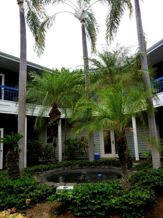 Holua Resort at The Mauna Loa Village: The beautiful courtyard with the tropical plants