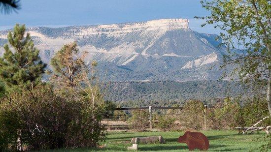 Sundance Bear Lodge: View from cabin