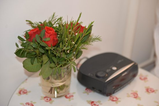 Bed and Breakfast Amsterdam: Fresh rose beside our bed