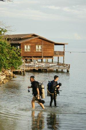 CoCo View Resort: Cabbanna & divers