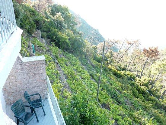 Due Gemelli: テラスから 急峻な斜面
