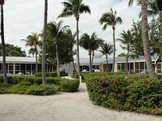Islander Resort: the 'yard', what you see from your screened in porch