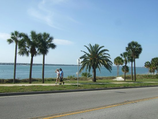 Magnuson Hotel Clearwater Hotel: A beautiful view of the beach area across the street!