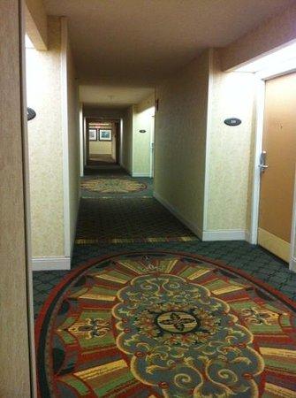 新奧爾良機場希爾頓飯店照片