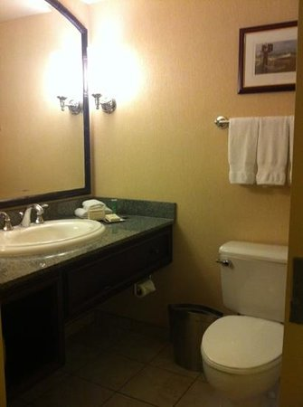 Hilton New Orleans Airport: bathroom