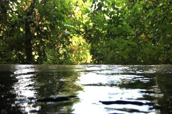 Jetwing Kurulubedda: Plunge Pool