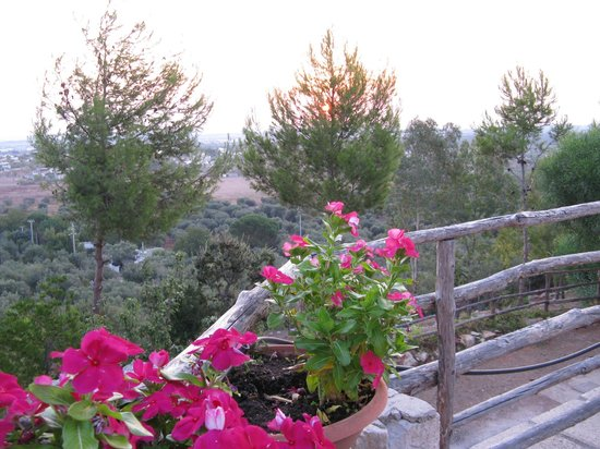Residenze Fusaro: Vista dalla terrazza