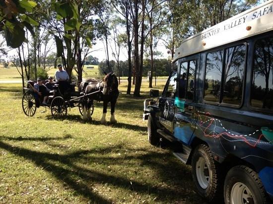 Hunter Valley Wine Safaris Tours & Valley Transfers: tour