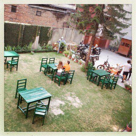 Acme Guest House: Garden view