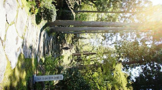 Rinsen-ji Temple : 墓所へ