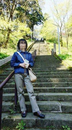 Kasugayama Shrine: 階段の途中