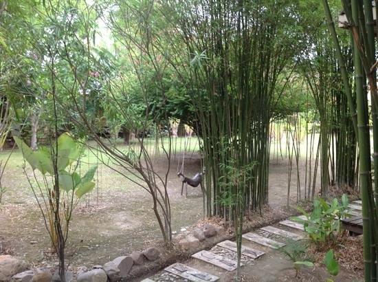 Gims Resort : le jardin