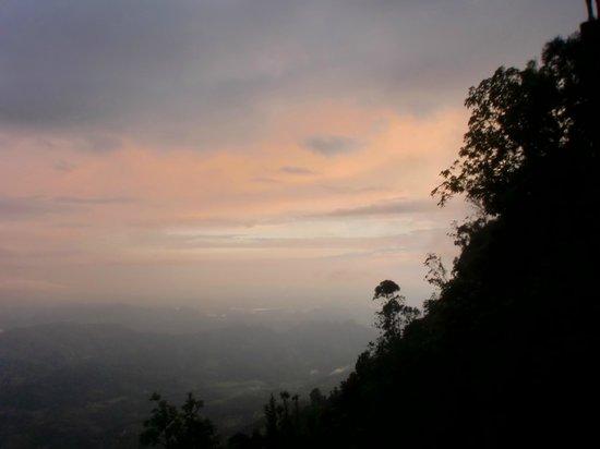White Monkey - Dias Rest: Aussicht von der Terrasse