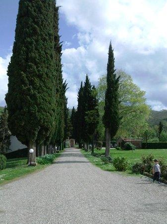 Villa Campestri Olive Oil Resort: Villa Campestri 3
