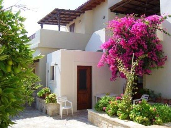 Horiatiko Spiti: Hotel courtyard/garden