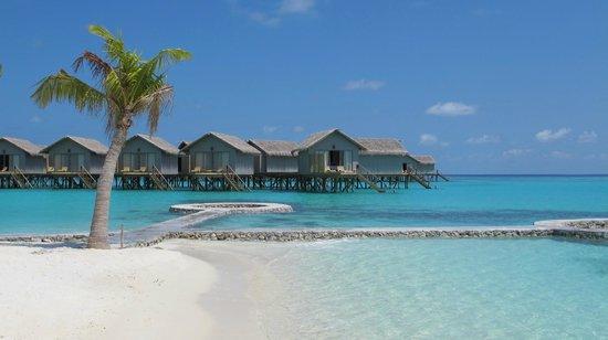 Centara Ras Fushi Resort & Spa Maldives : Plage