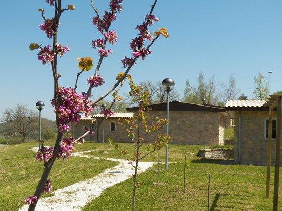 Pieve Torina, Italien: Villaggio e chalet immersi nel parco dei sibillini