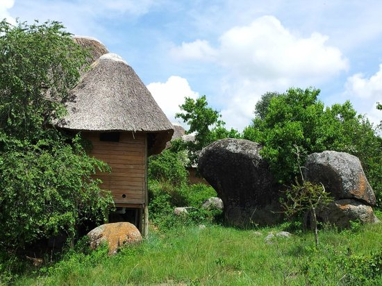 Mburo Safari Lodge: serene