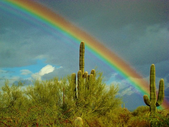 The Paniolo Ranch: Double rainbows at the ranch