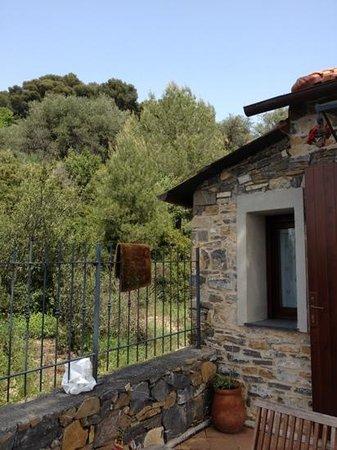 Agriturismo Casale Filiberto Diano San Pietro: immerso tra gli ulivi