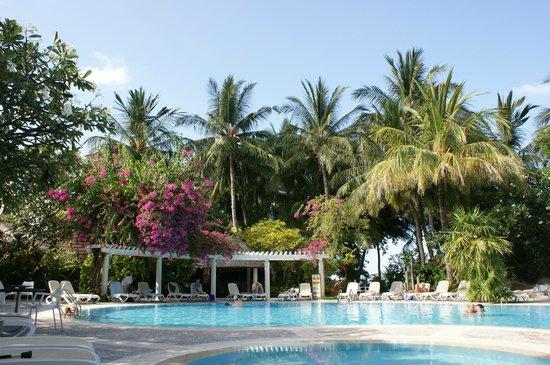 deluxe beach villa picture of kuramathi island resort. Black Bedroom Furniture Sets. Home Design Ideas