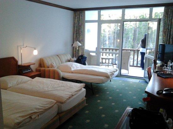 Hotel am Badersee: Superior Room