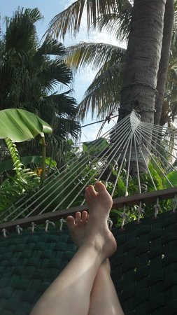 Southernmost Point Guest House: Chillin' in the hammock